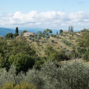 Das würzige Fiamma 500 ml kommt aus der schönen Toskana in Italien