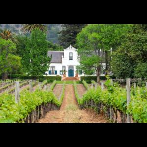 Aus Südafrika ein 6er Probierpaket toller Weine für 60 Euro